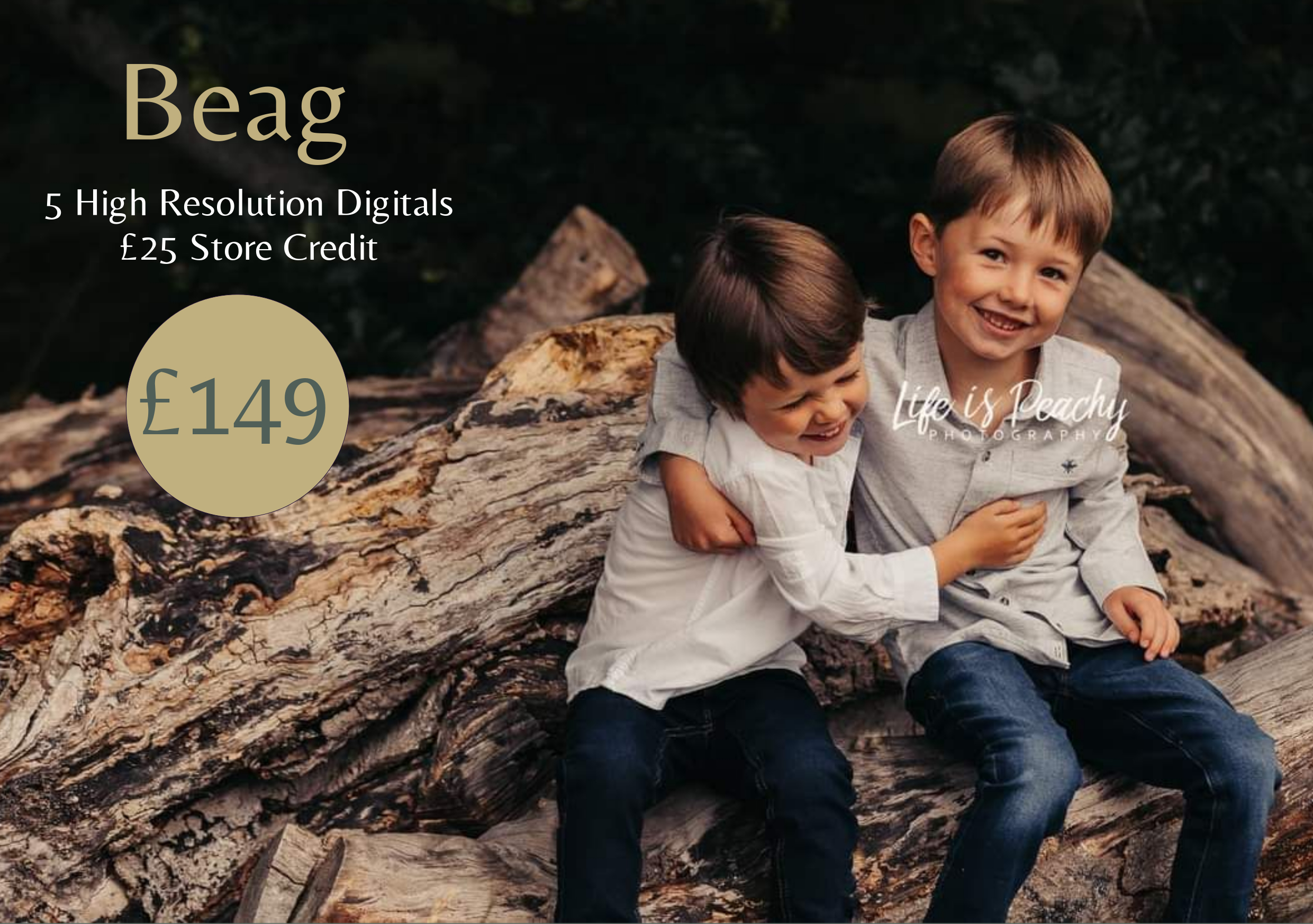 Beag Pricing Information